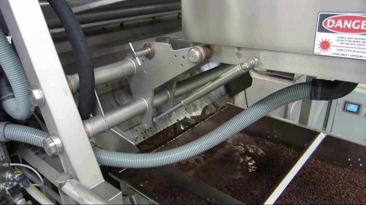 raisin-sorting-machine-helius-and-ixus