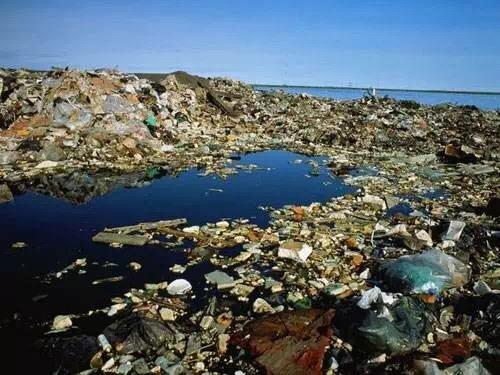陶朗集团呼吁减少海洋垃圾