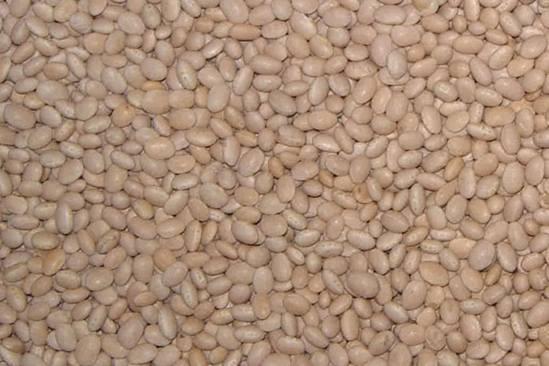 beans-4