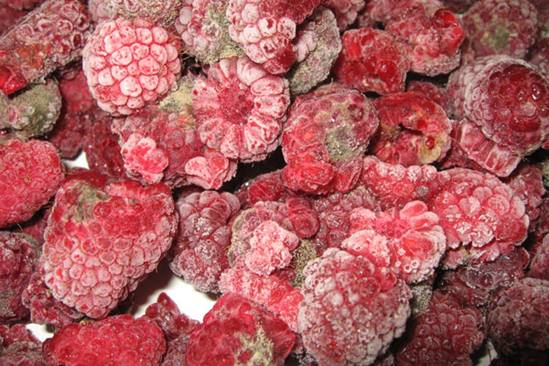 raspberries-4