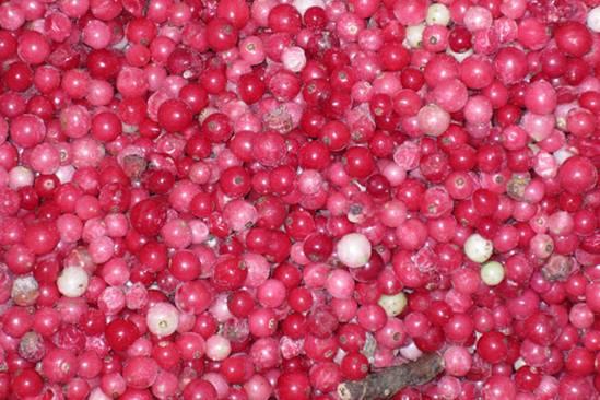 redberries-2