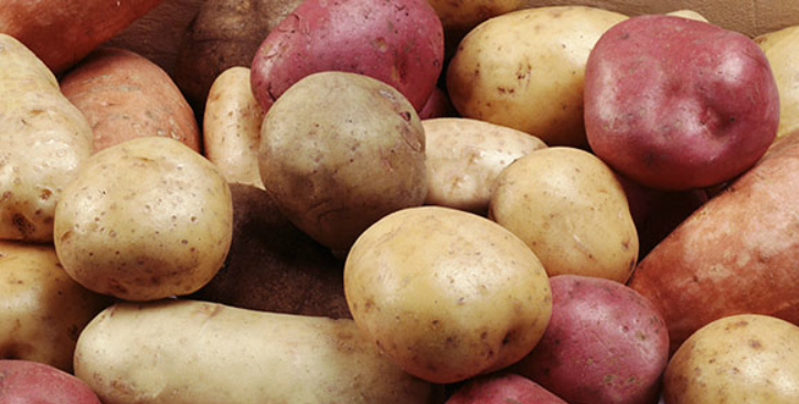 vegetable-and-potato-lines-2