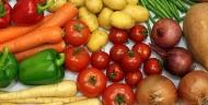 蔬菜和马铃薯加工生产线