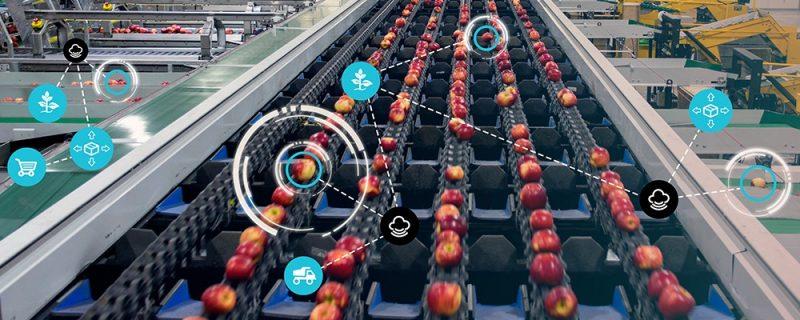 客户可以依据真实的分选和包装车间,复制出一个虚拟的场景,并在虚拟场景中模拟真实产品的分选,并依据分选效果进行参数调整和优化