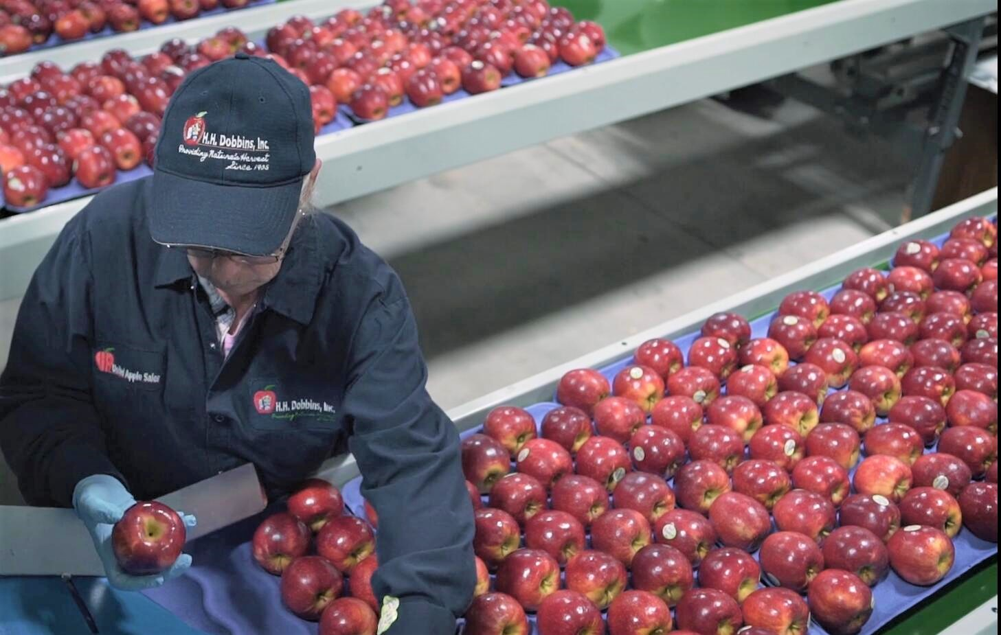 H.H.-Dobbins的品牌优势来自于优质且稳定的水果品质