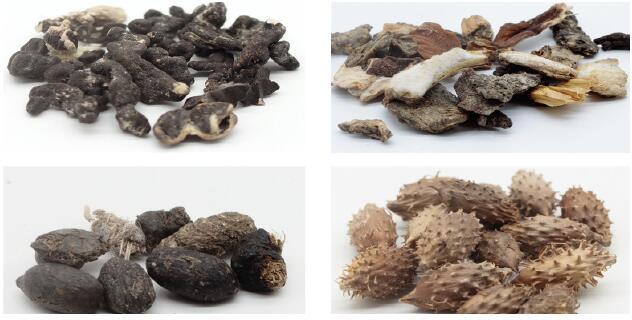 葵花籽中常见杂质
