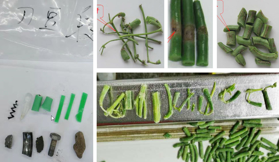 Green-Beans-Callage